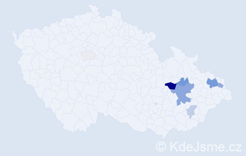 Příjmení: 'Endel', počet výskytů 21 v celé ČR