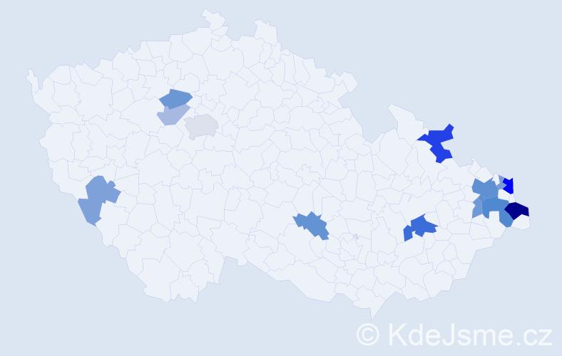 Příjmení: 'Hankus', počet výskytů 30 v celé ČR