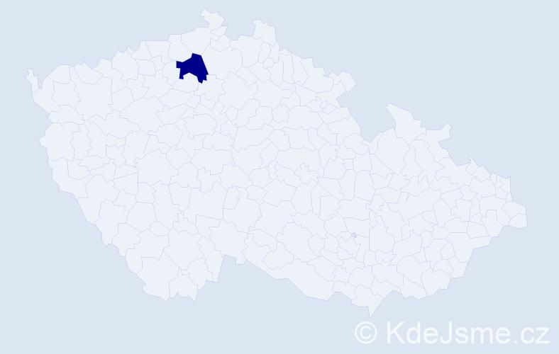 """Příjmení: '""""Krejčíková Březinová""""', počet výskytů 1 v celé ČR"""