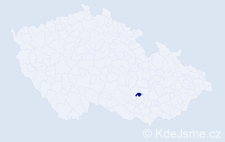 """Příjmení: '""""Adamcová Kusá""""', počet výskytů 1 v celé ČR"""
