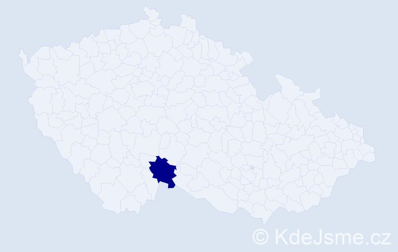 """Příjmení: '""""Kafková Bauerová""""', počet výskytů 1 v celé ČR"""