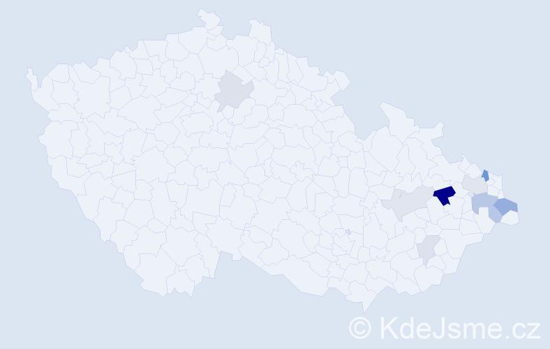 Příjmení: 'Holubčíková', počet výskytů 19 v celé ČR
