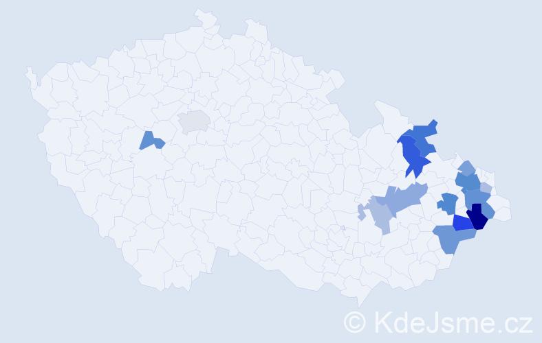 Příjmení: 'Gromnicová', počet výskytů 31 v celé ČR