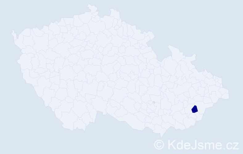 """Příjmení: '""""Kocourková Kneslová""""', počet výskytů 1 v celé ČR"""