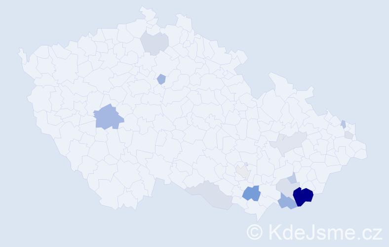 Příjmení: 'Breznický', počet výskytů 32 v celé ČR