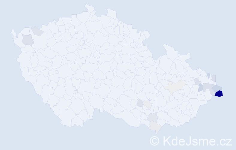 Příjmení: 'Kowolowski', počet výskytů 49 v celé ČR