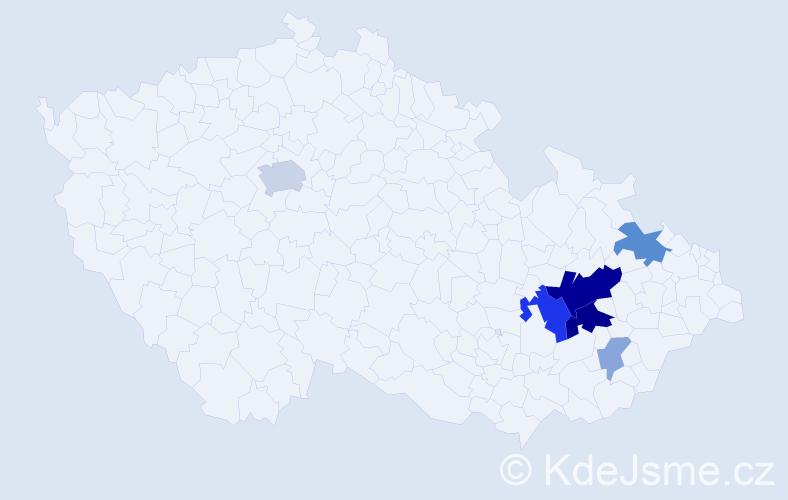 Příjmení: 'Čečman', počet výskytů 19 v celé ČR