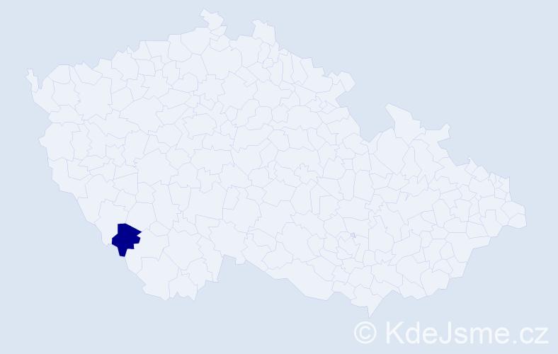 """Příjmení: '""""Koblížková Hronová""""', počet výskytů 1 v celé ČR"""