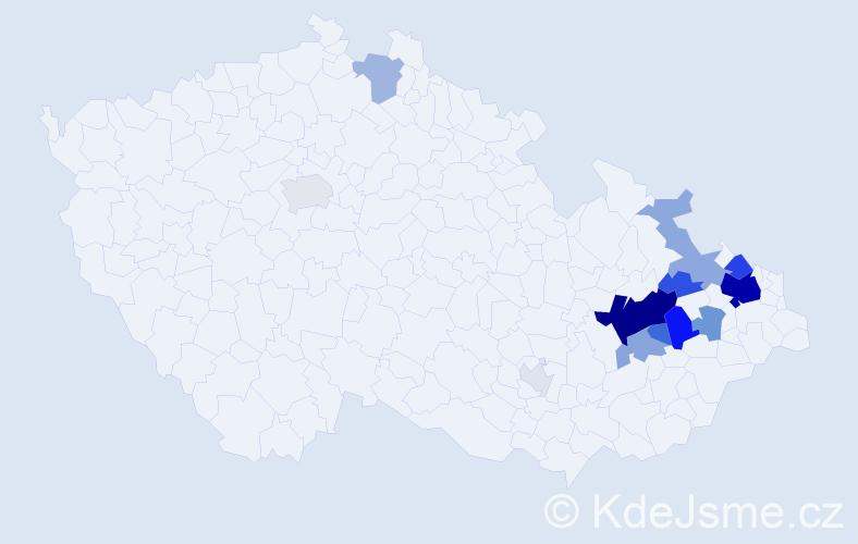 Příjmení: 'Hořínová', počet výskytů 55 v celé ČR