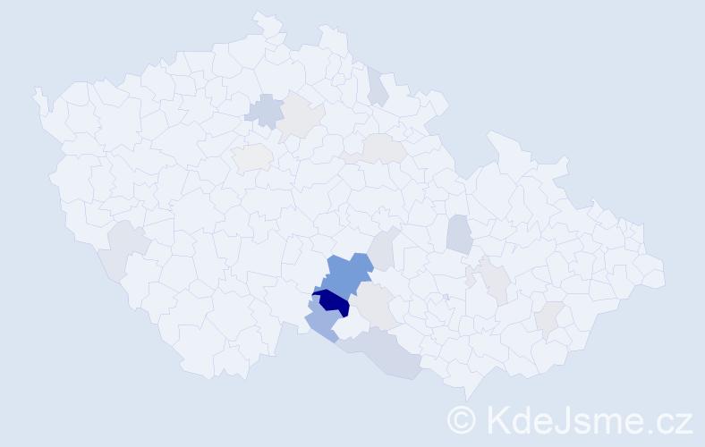 Příjmení: 'Dolská', počet výskytů 42 v celé ČR