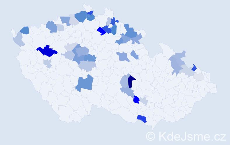 Příjmení: 'Hallerová', počet výskytů 98 v celé ČR