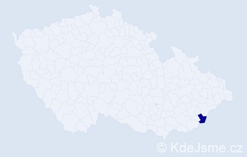 """Příjmení: '""""Česneková Kostková""""', počet výskytů 1 v celé ČR"""