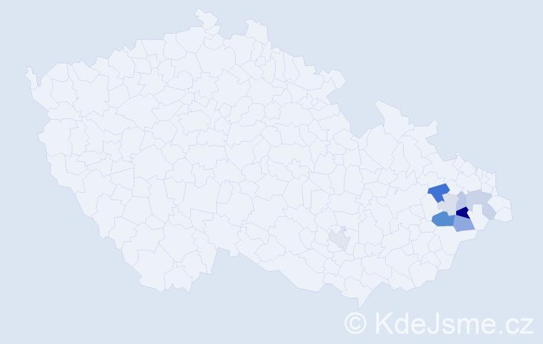 Příjmení: 'Gurášová', počet výskytů 32 v celé ČR