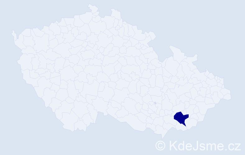 """Příjmení: '""""Čaňo Hanušová""""', počet výskytů 1 v celé ČR"""
