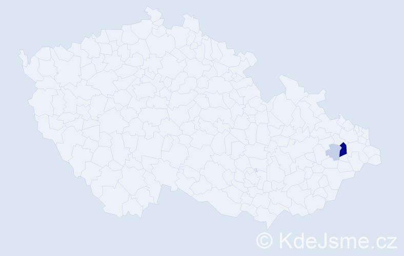 Příjmení: 'Goršanov', počet výskytů 21 v celé ČR