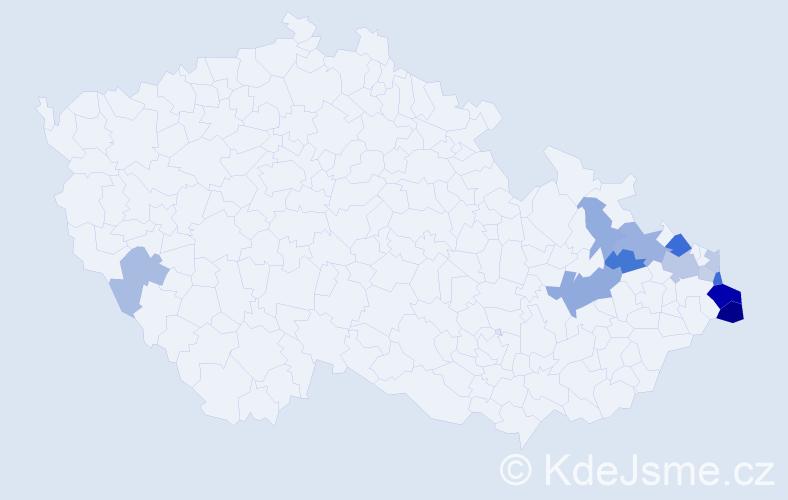Příjmení: 'Gorniak', počet výskytů 28 v celé ČR
