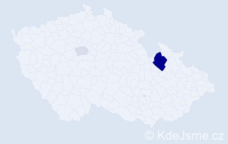 Příjmení: 'Irimičuk', počet výskytů 3 v celé ČR