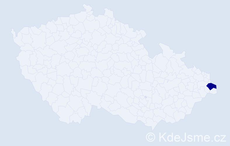 """Příjmení: '""""Adamíková Glacová""""', počet výskytů 1 v celé ČR"""