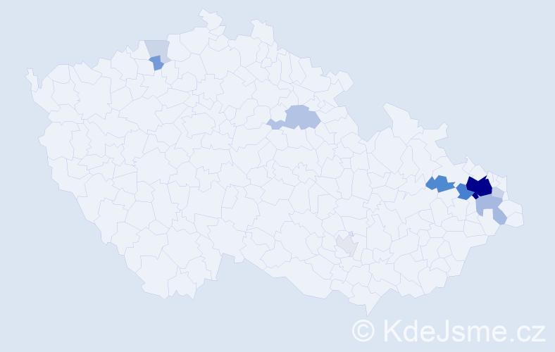 Příjmení: 'Haft', počet výskytů 41 v celé ČR