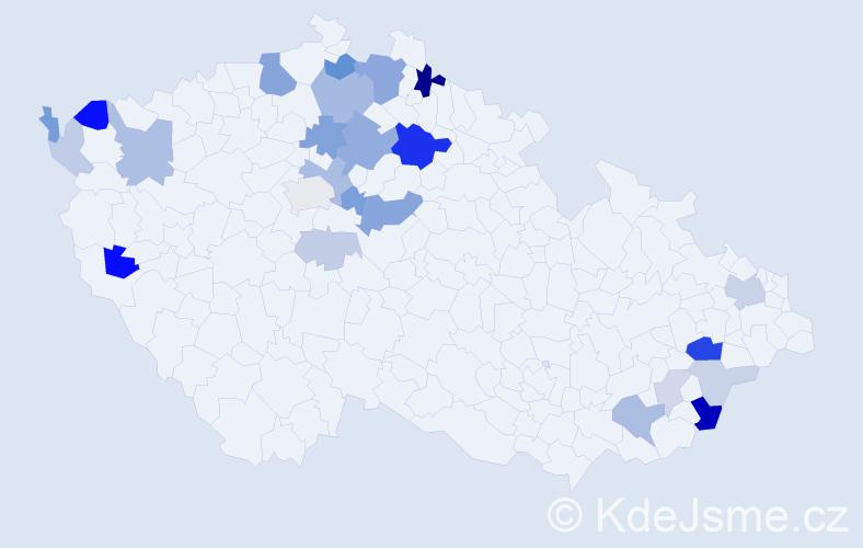 Příjmení: 'Bajzíková', počet výskytů 60 v celé ČR