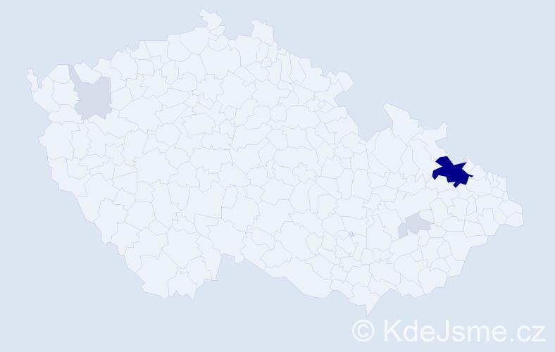 Příjmení: 'Bokiš', počet výskytů 21 v celé ČR