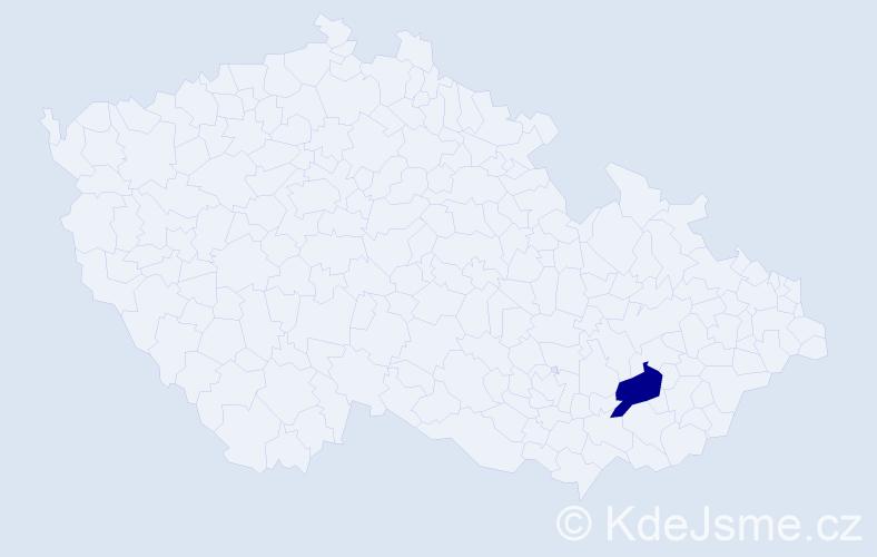 """Příjmení: '""""Červenáková Hradilová""""', počet výskytů 1 v celé ČR"""