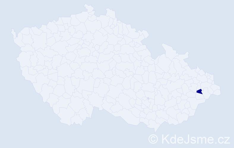 """Příjmení: '""""Adamcová Machová""""', počet výskytů 1 v celé ČR"""