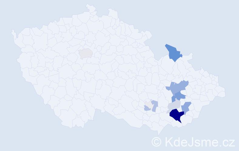Příjmení: 'Ilík', počet výskytů 45 v celé ČR